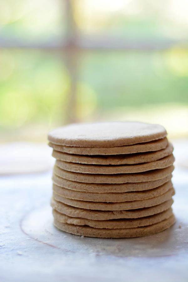 theflashcookies02