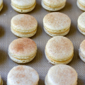 snickerdoodlemacaronsfeat