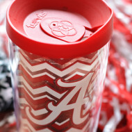 Tailgating Cocktail: The Yellow Hammer (Tervis Tumbler Giveaway!)